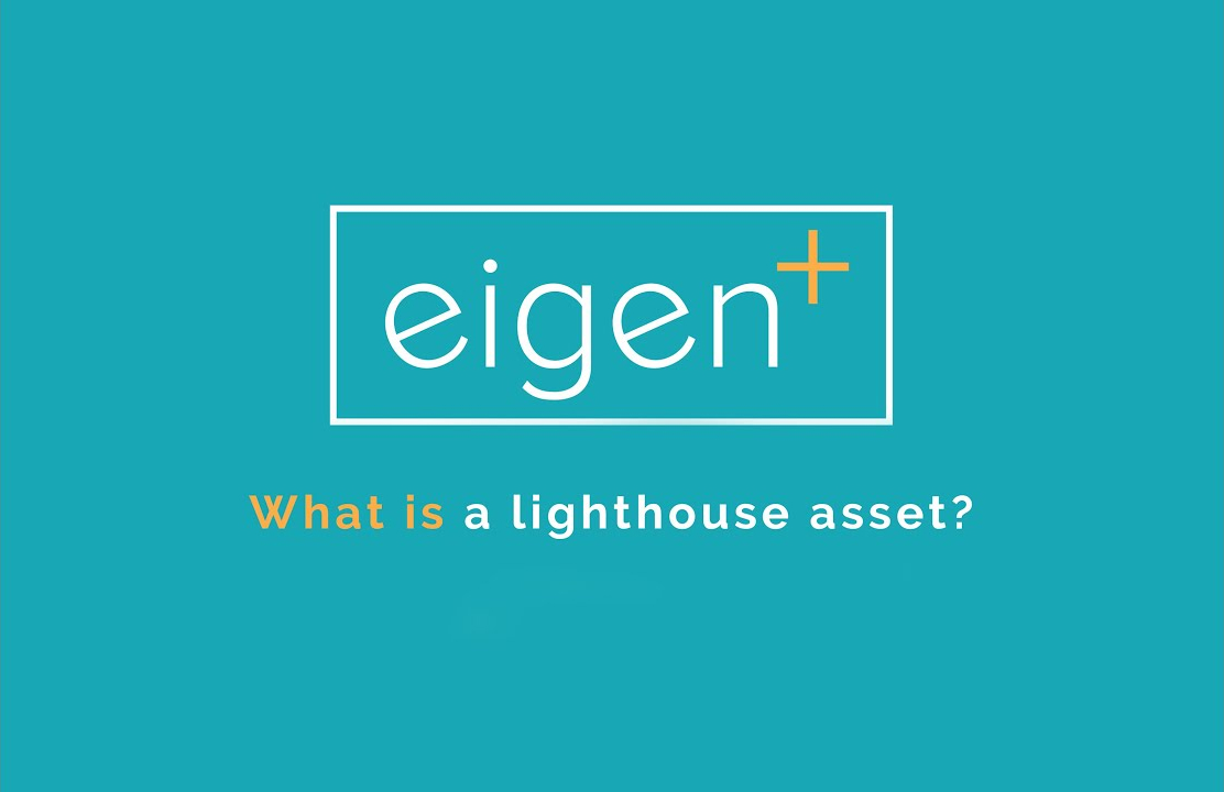 What is a Lighthouse Asset?